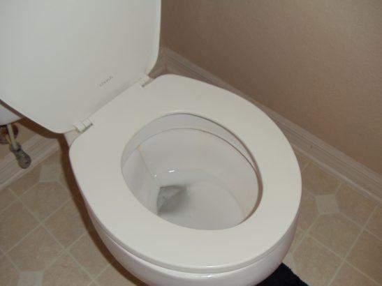 Standard Toilet Seat Sizes DIY Home Repair