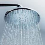 Grohe Shower Head